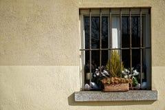 葡萄酒格栅窗口和干燥花在花盆在窗口基石,晴天,意大利样式 免版税图库摄影