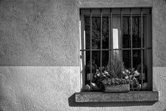 葡萄酒格栅窗口和干燥花在花盆在窗口基石,晴天,意大利样式 免版税库存图片