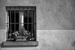葡萄酒格栅窗口和干燥花在花盆在窗口基石,晴天,意大利样式 库存照片