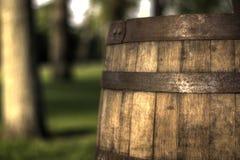 葡萄酒桶在公园 库存照片