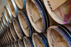 葡萄酒桶在地窖里 图库摄影