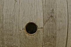 葡萄酒桶开头和蜘蛛网 库存图片