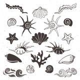 葡萄酒海壳、海星、海草、珊瑚和波浪 图库摄影