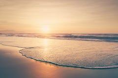 葡萄酒海滩夏天背景  库存图片
