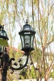 葡萄酒灯在庭院里 免版税库存图片
