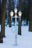 葡萄酒灯岗位在冬天夜在森林里 库存图片