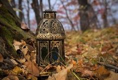 葡萄酒灯笼在秋天森林里 免版税库存照片