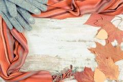 葡萄酒照片、女子般地的羊毛衣裳和秋季叶子有拷贝空间的文本的,老土气木背景 库存照片