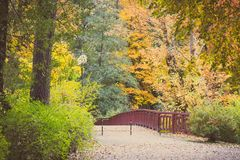 葡萄酒照片、小径和桥梁在秋季公园,树与金黄叶子 免版税库存图片