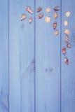 葡萄酒照片、贝壳在紫色木板,假期和夏时,拷贝空间文本的 免版税图库摄影