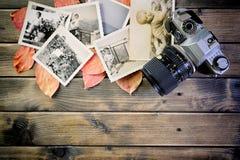 葡萄酒照片和照相机特写镜头在古色古香的木桌和叶子背景 图库摄影