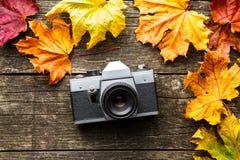 葡萄酒照片照相机和烘干在木背景的叶子 免版税库存照片
