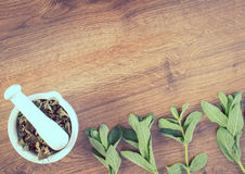 葡萄酒照片,新鲜的绿色和干薄菏与灰浆,健康生活方式,拷贝空间文本的 免版税库存图片