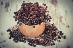 葡萄酒照片,束在老木背景,健康食物的新鲜的接骨木浆果 免版税库存照片