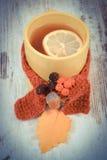 葡萄酒照片,杯热的茶用柠檬包裹了羊毛围巾和秋季叶子 免版税库存图片