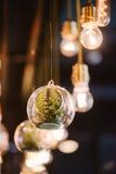 葡萄酒爱迪生电灯泡,特写镜头 免版税库存图片