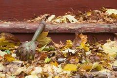 葡萄酒犁耙和秋天叶子 免版税库存图片