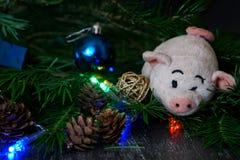 葡萄酒玩具-长毛绒猪-新年假日ne的标志 免版税图库摄影