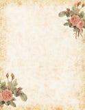 葡萄酒玫瑰固定式与文本的空白的区域 皇族释放例证