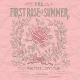 葡萄酒玫瑰拼贴画纸背景-破旧的别致的花卉罗斯装饰了纹理 库存例证