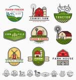 葡萄酒现代农厂商标模板设计 免版税库存图片