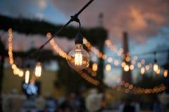 葡萄酒电灯泡焦点 免版税库存照片