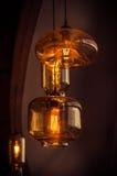葡萄酒电灯泡 库存照片