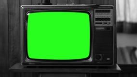 葡萄酒电视绿色屏幕 20世纪80年代的美学 黑白口气 徒升 股票视频
