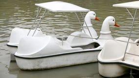 葡萄酒白色鸭子休闲小船在泰国公园 图库摄影