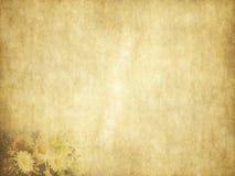 葡萄酒秀丽雏菊在老纸的假日卡片 免版税库存照片