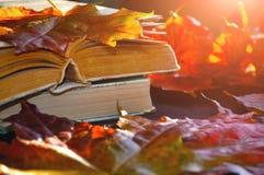 葡萄酒秋天静物画-在桌上的旧书在干燥槭树附近离开 库存图片