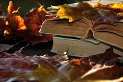 葡萄酒秋天静物画-在桌上的旧书在干燥槭树附近离开 免版税库存图片