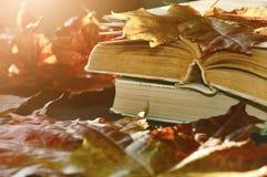 葡萄酒秋天静物画-在桌上的旧书在干燥槭树附近离开 免版税图库摄影