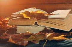 葡萄酒秋天静物画-在桌上的老被佩带的开放书在干燥槭树附近离开 免版税库存图片
