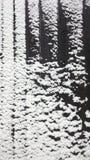 葡萄酒积雪的木背景 库存照片