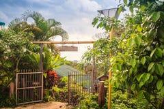 葡萄酒竹子和木入口门 传统门和fe 免版税库存照片