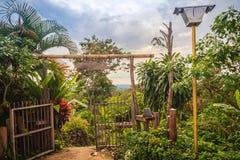 葡萄酒竹子和木入口门 传统门和fe 库存图片
