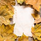 葡萄酒笔记的白纸卡片关于下落的叶子 免版税库存照片
