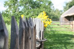 葡萄酒篱芭在白俄罗斯语在米斯克附近的生活` `博物馆  免版税库存照片