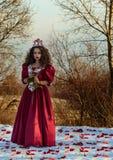 葡萄酒红色礼服的美丽的女孩有玫瑰的 免版税图库摄影