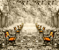 葡萄酒红色长凳在公园 库存图片