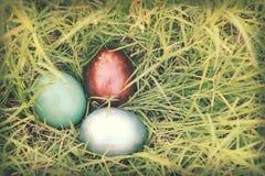 葡萄酒纸纹理,在密集的草掩藏的五颜六色的复活节彩蛋 免版税库存图片