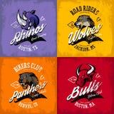 葡萄酒美国愤怒的公牛,狼,豹,犀牛骑自行车的人俱乐部发球区域印刷品传染媒介设计 图库摄影