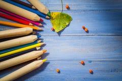 葡萄酒背景上色了铅笔秋天果子蓝色桌 库存图片