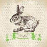 葡萄酒背景用复活节兔子 图库摄影