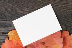 葡萄酒背景的被定调子的秋天橡木叶子 库存照片