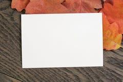 葡萄酒背景的被定调子的秋天橡木叶子 库存图片