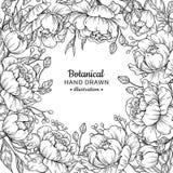 葡萄酒花传染媒介框架图画 牡丹、玫瑰、叶子和误码率 皇族释放例证