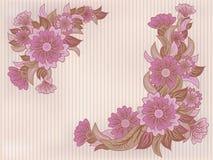 葡萄酒花卉墙纸,传染媒介 库存图片