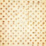 葡萄酒花卉模式 库存图片